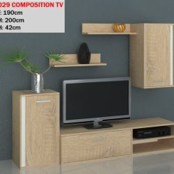 PR 3029 COMPOSITION TV